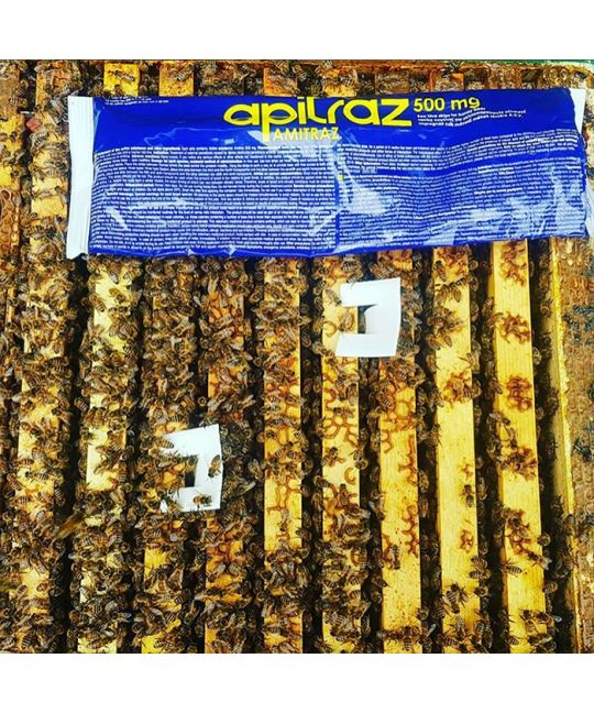 Apitraz Strips Varroa Treatment
